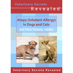 Atopy in Dogs and Cats (Video)