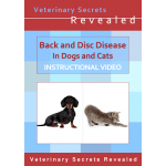 Back and Disc Disease in Dogs and Cats (Video)