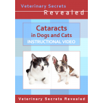 Cataracts in Dogs and Cats