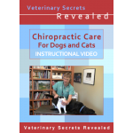Chiropractic Care for Dogs and Cats (Video)