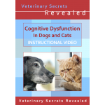 Cognitive Dysfunction in Dogs and Cats (Video)