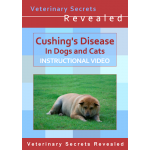 Cushings Disease in Dogs And Cats (Video)