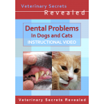 Dental Problems In Dogs And Cats (Video)