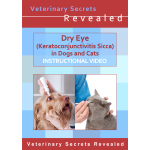 Dry Eye (Keratoconjunctivitis Sicca or KCS) in Dogs and Cats (Video)