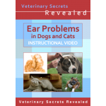 Ear Problems in Dogs and Cats (Video)