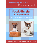 Food Allergies in Dogs and Cats (Video)