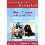 Heart Disease In Dogs And Cats (Video)