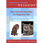 New Arthritis Remedies for Dogs and Cats (Video)