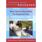 New Cancer Remedies for Dogs and Cats (Video)