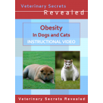 Obesity in Dogs and Cats (Video)