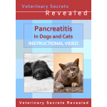 Pancreatitis in Dogs and Cats (Video)