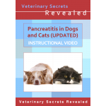 Pancreatitis in Dogs and Cats - Updated (Video)