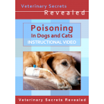 Poisoning in Dogs And Cats (Video)