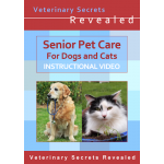 Senior Pet Care (Video)