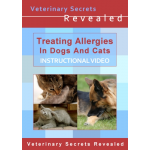 Treating Allergies In Dogs And Cats (Video)