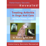 Treating Arthritis In Dogs And Cats (Video)