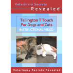 Tellington T Touch For Dogs And Cats (Video)